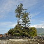 Clayoquot,  Vancouver Island Canada