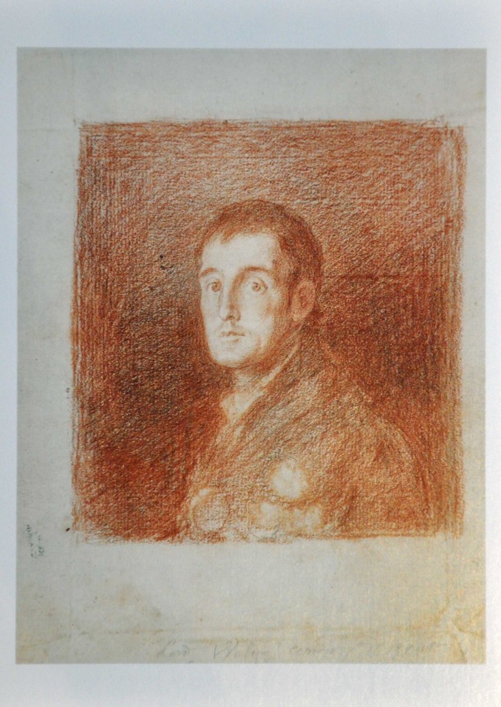 Goya: Duke of Wellington, Chalk & Graphite