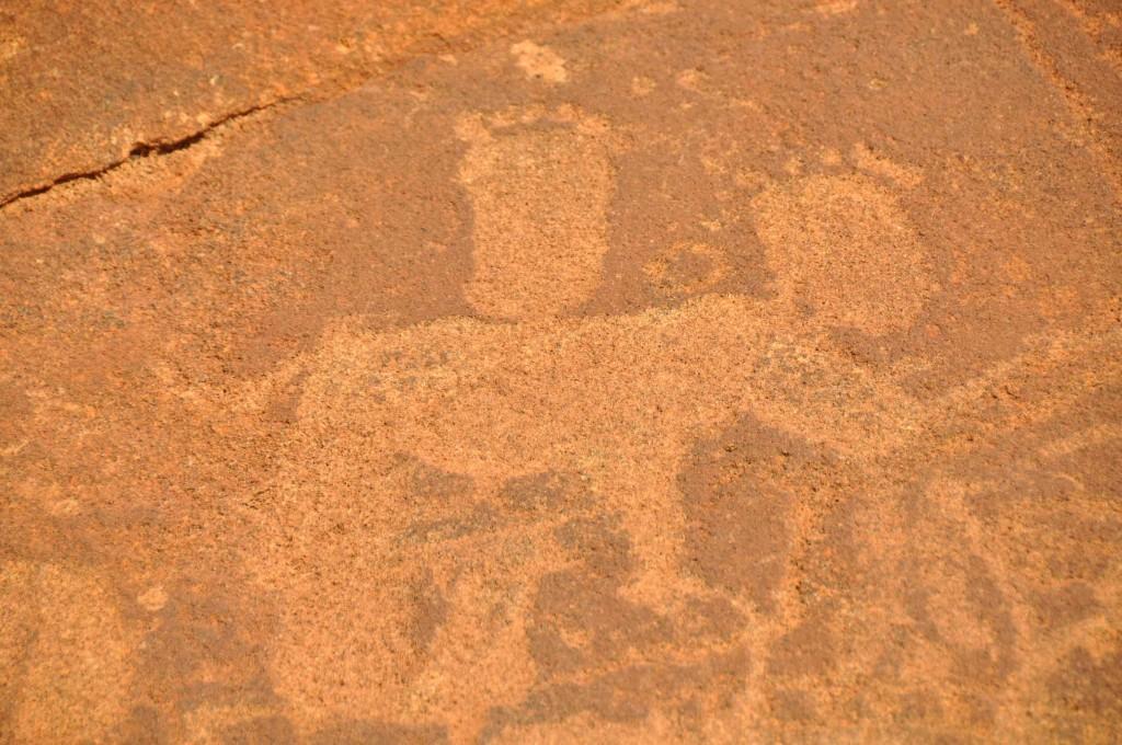Hippo, Twyfelfontein